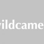 Wildcamera iets voor jou?